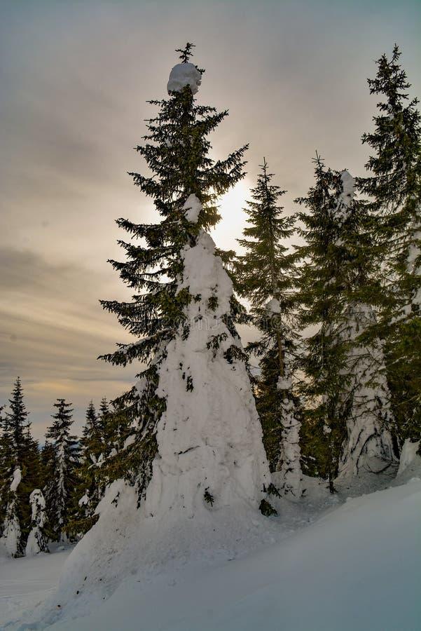 De kleurenwolken en winter royalty-vrije stock afbeeldingen