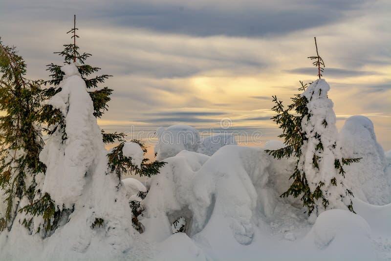 De kleurenwolken en winter stock foto