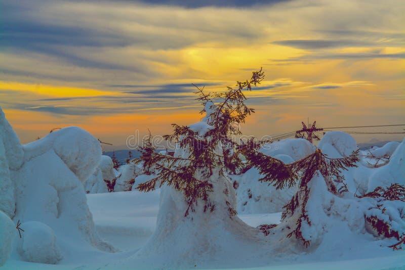 De kleurenwolken en winter stock foto's