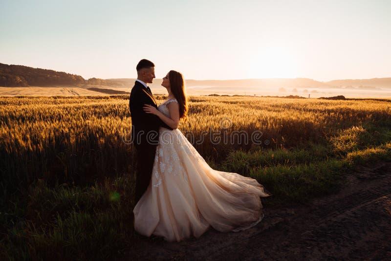 De kleurrijke aard omringt aantrekkelijk koesterend huwelijkspaar royalty-vrije stock foto's