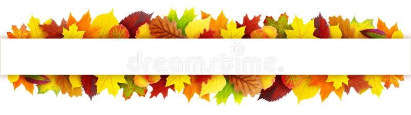 De kleurrijke banner van de herfstbladeren royalty-vrije stock foto