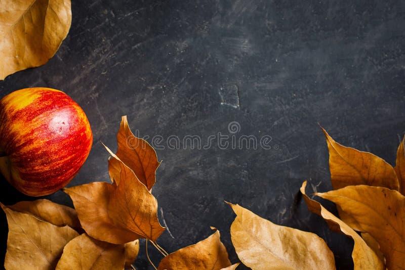 De Kleurrijke Bladeren Rood Apple van Autumn Fall Boarder Frame Dry op Zwarte Steenachtergrond Ruimte van het tekst de klaar Exem stock afbeelding