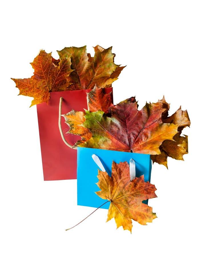 De kleurrijke bladeren van de de herfstesdoorn in rode en blauwe document het winkelen geïsoleerde zak royalty-vrije stock fotografie