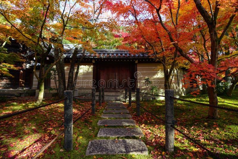 De kleurrijke bomen die van de de herfstesdoorn een weg in de schaduw stellen aan een traditionele Japanse poort in Kyoto royalty-vrije stock afbeelding