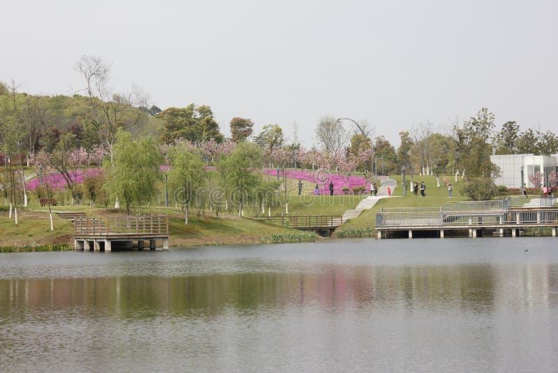 De kleurrijke lente in Shenshan-Tuin (Wuhu, China) royalty-vrije stock foto's