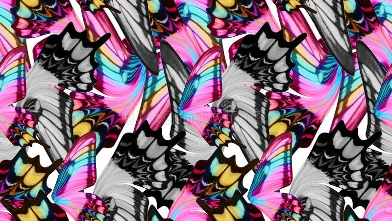 De kleurrijke naadloze achtergrond van vlindervleugels stock afbeelding