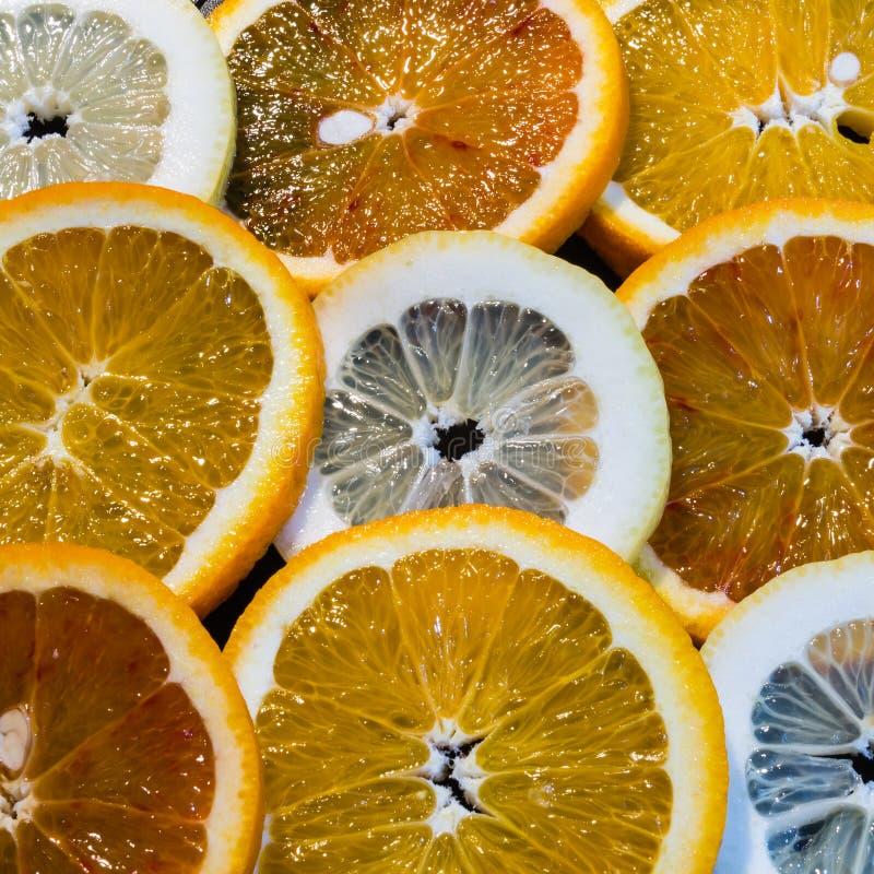De kleurrijke Ronde Achtergrond van het Fruit Citrius royalty-vrije stock foto