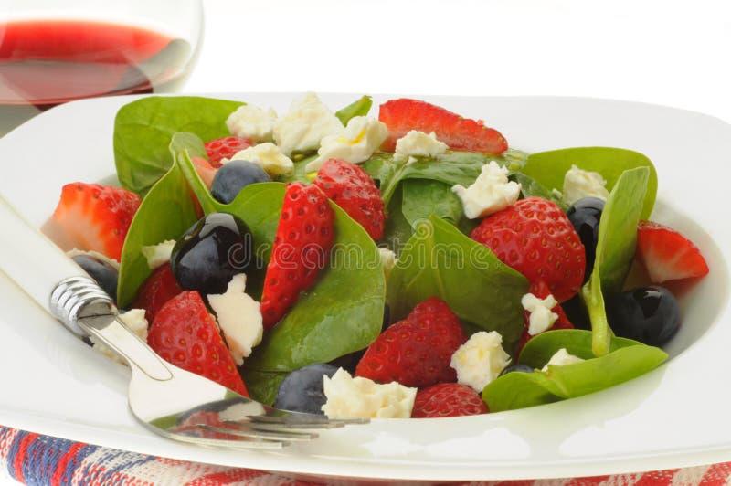 De kleurrijke Salade van de Zomer stock afbeeldingen
