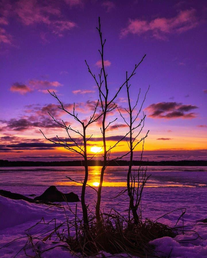 De kleurrijke zonsondergang van de de winteravond stock afbeelding