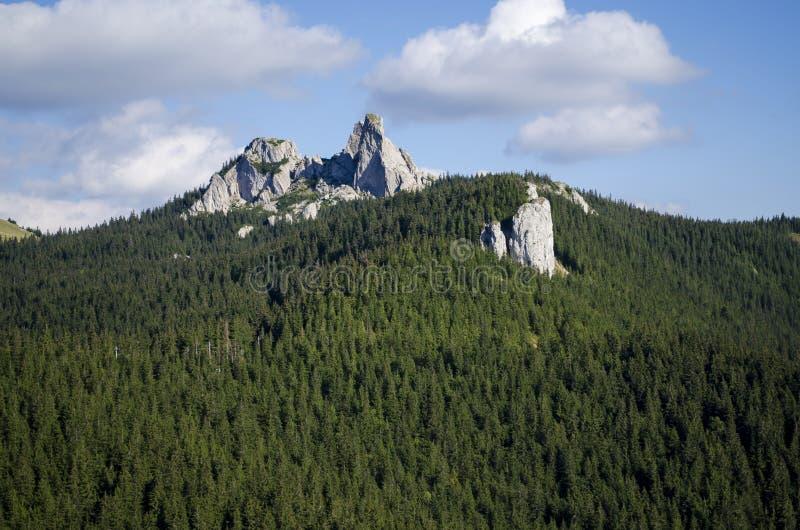 De klip van dames stenen - Rarau - Campulung - Roemenië stock foto