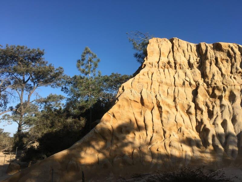 De klippen sluiten omhoog in Torrey Pines State Reserve, La Jolla, CA stock afbeelding