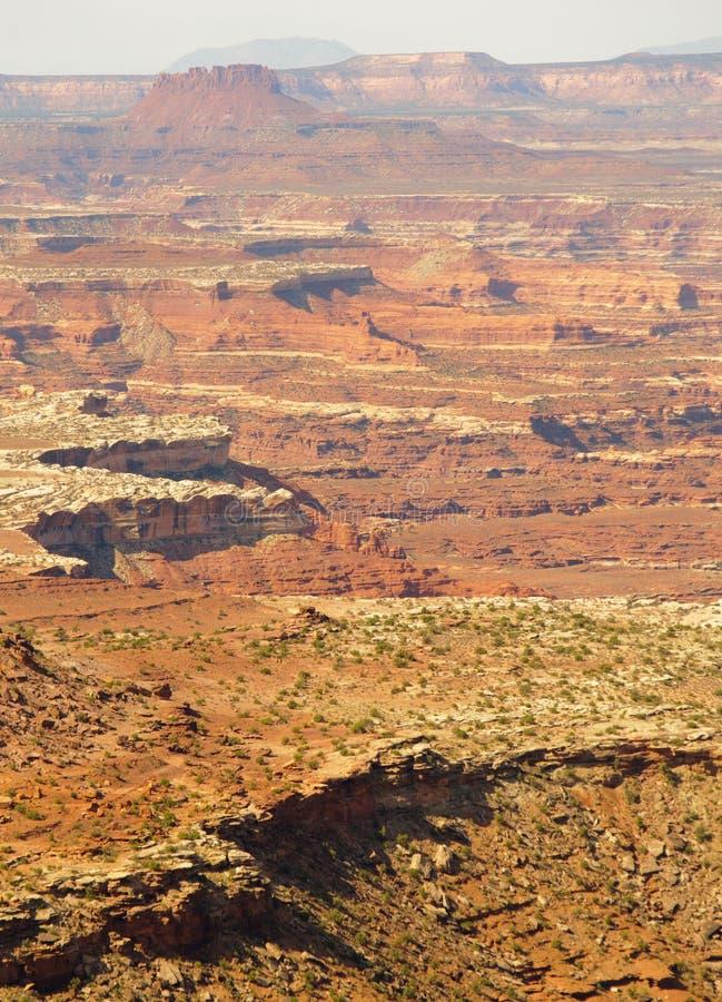 De Klippen Van Canyonlands En Van Mesa Royalty-vrije Stock Afbeeldingen