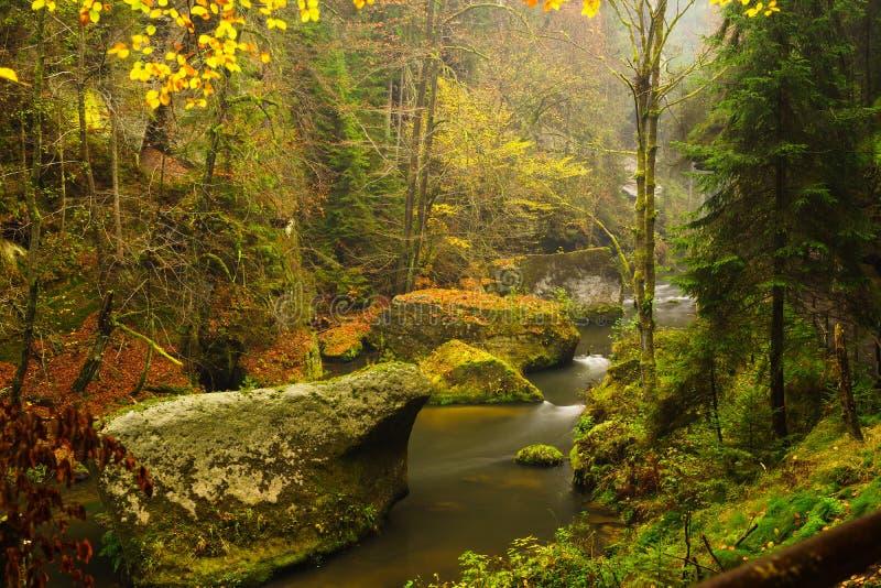 De kloof van Edmund ` s in het Nationale Park van Tsjechisch Zwitserland stock fotografie