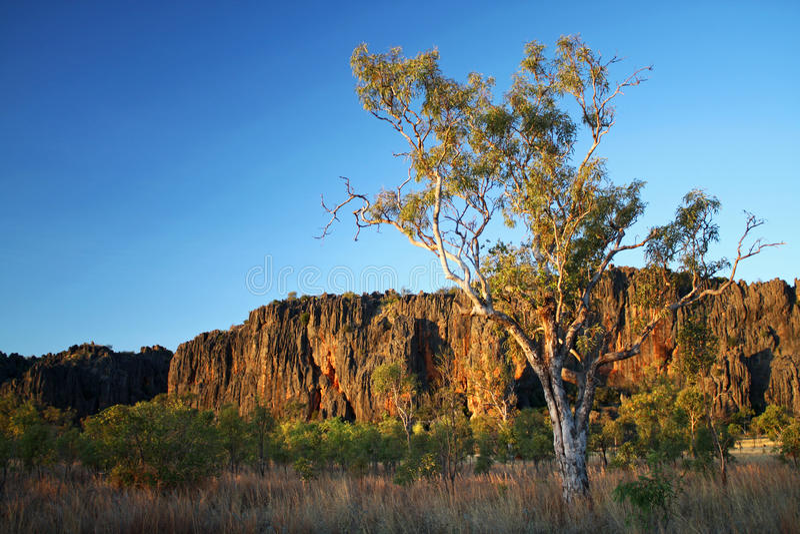 De Kloof van Windjana, Kimberley royalty-vrije stock foto's