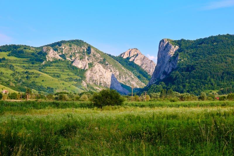 De Kloven van Cheileaiudului Aiudului, of Valisoarei-de Kloven, of Poienii-de Kloven zijn een geomorfologisch en botanisch natuur royalty-vrije stock foto's