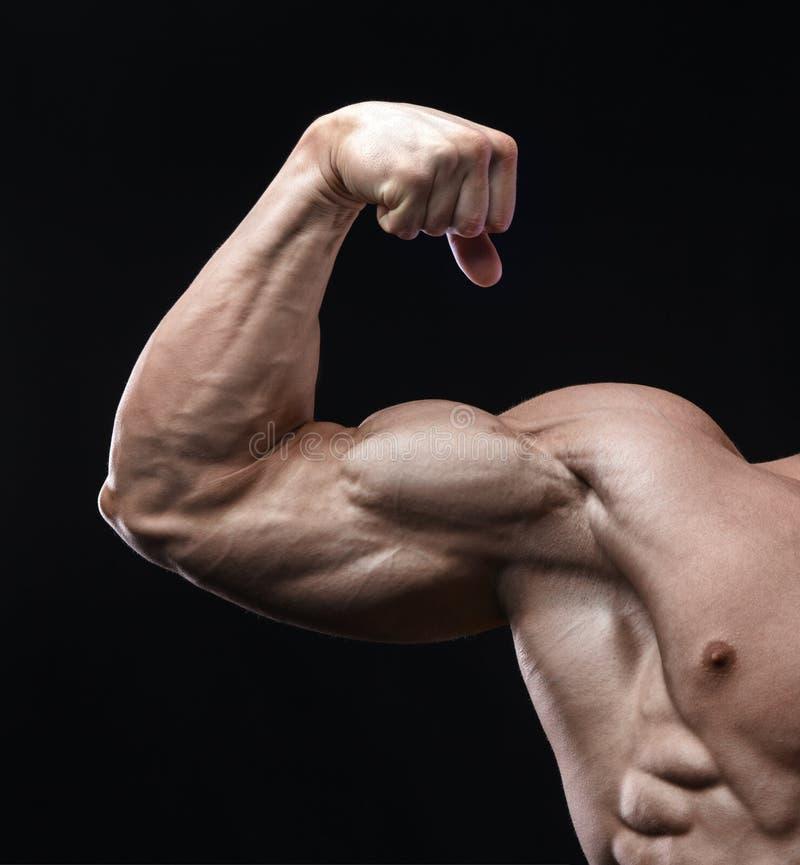 De knappe bodybuilder van de machts atletische mens toont zijn bicepsen aan royalty-vrije stock fotografie