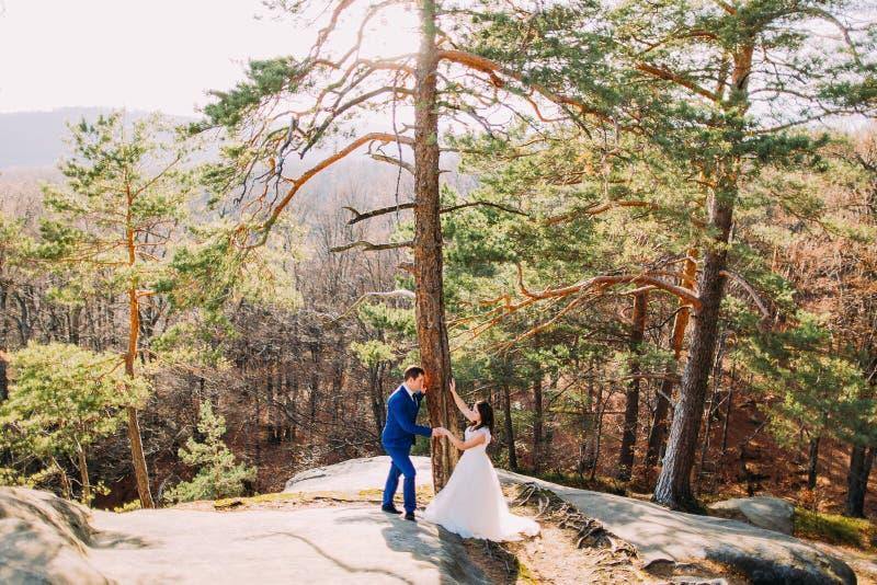 De knappe bruidegom houdt zacht zijn elegante nieuwe vrouw onder pijnboomboom Het landschap van de berg royalty-vrije stock fotografie