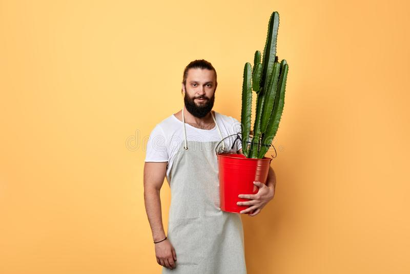 De knappe malerbloemist kleedde zich in schort met een bloem bekijkend de camera stock foto's