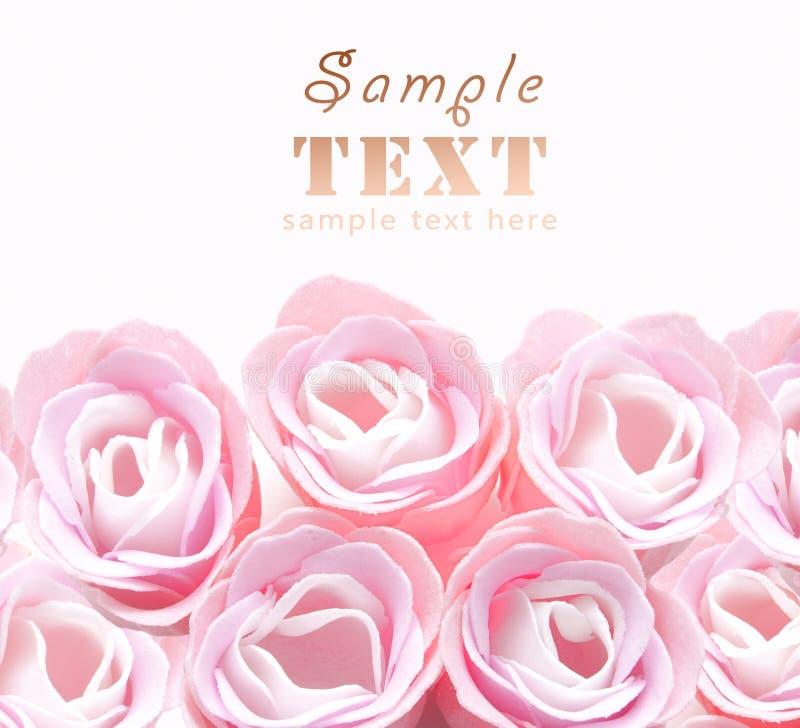 De knoppen van roze rozen sluiten omhoog stock fotografie