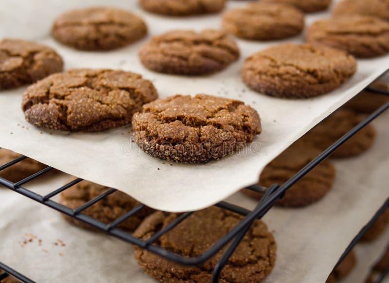 De koekjes van het baksel royalty-vrije stock foto's