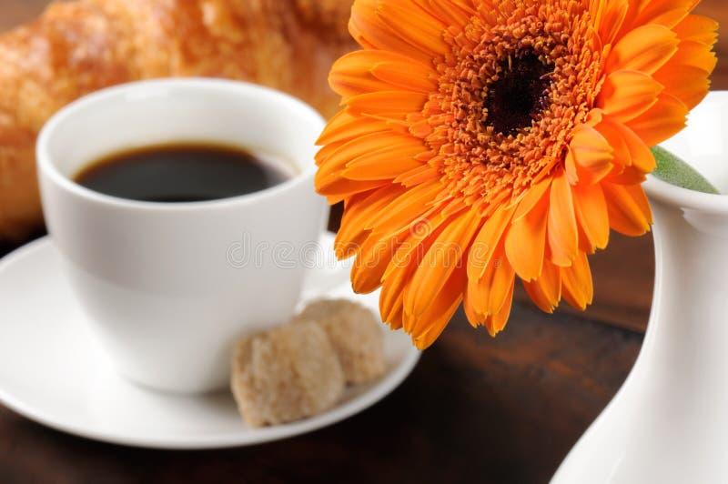 De koffiereeks van de ochtend stock foto's