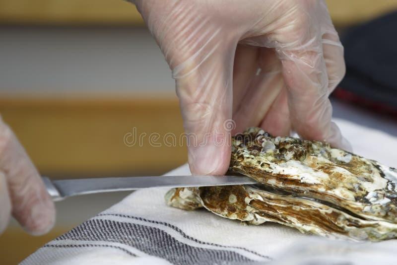 De kok opent de oester met een mes royalty-vrije stock afbeeldingen