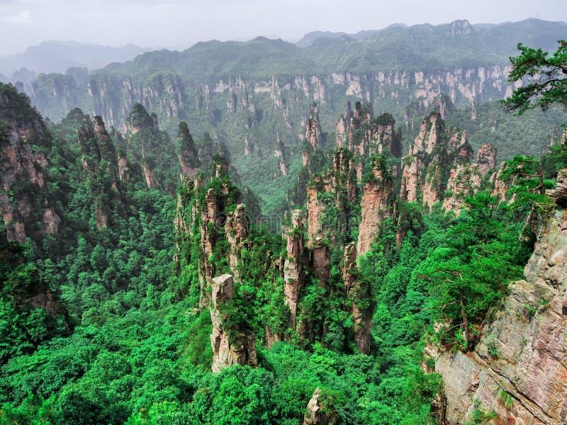 De kolomkarst van de Tianziberg bij het Toneelgebied van Wulingyuan, Zhangjiajie Nationaal Forest Park, Hunan, China stock foto's