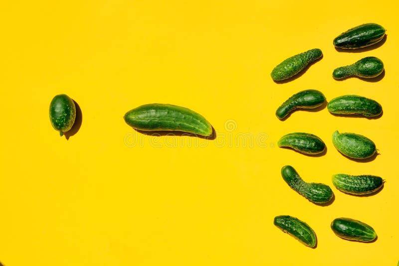 De komkommers symboliseert het proces van bemesting van het ovum door het sperma stock afbeeldingen