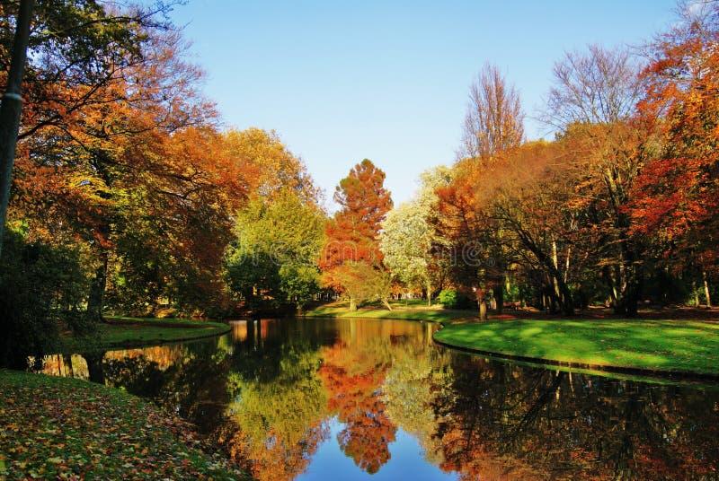 De komst van de herfst royalty-vrije stock afbeeldingen