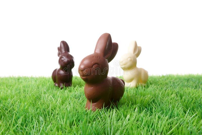 De Konijnen van de chocolade royalty-vrije stock foto