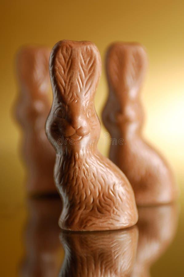 De Konijntjes van de chocolade stock fotografie