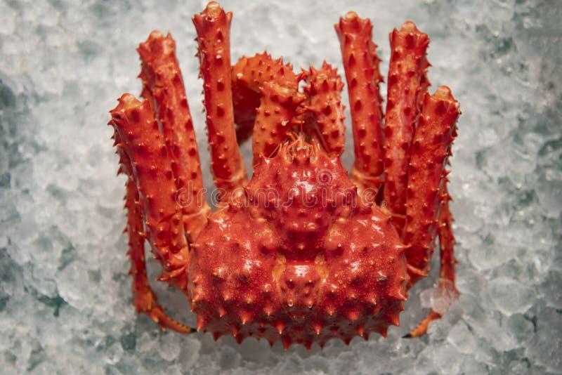 De Koning van Alaska Crab op ijs hoogste mening als achtergrond - rode krab Hokkaido bij zeevruchtenmarkt royalty-vrije stock afbeeldingen