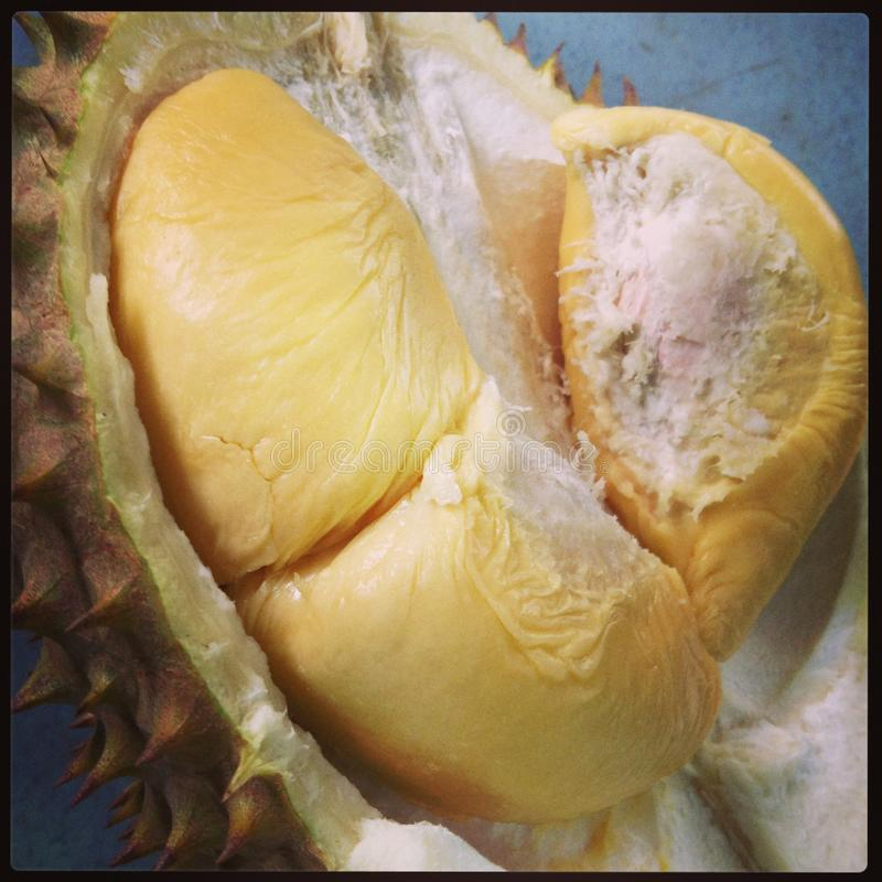 De Koning van Durian van fruit royalty-vrije stock fotografie