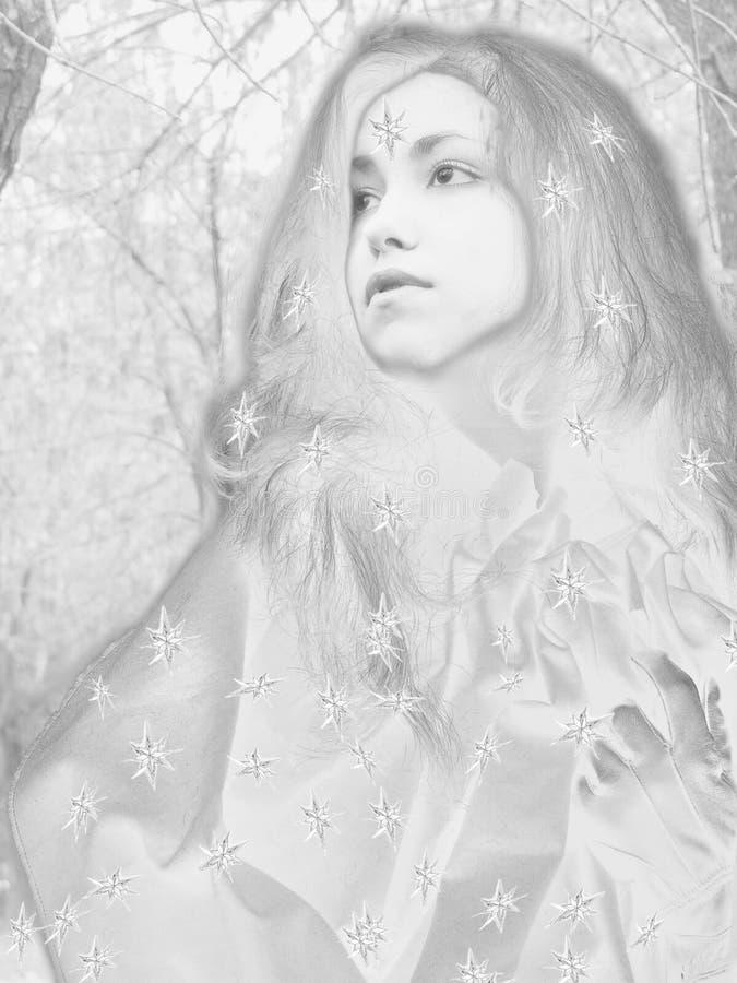 De koningin van de sneeuw