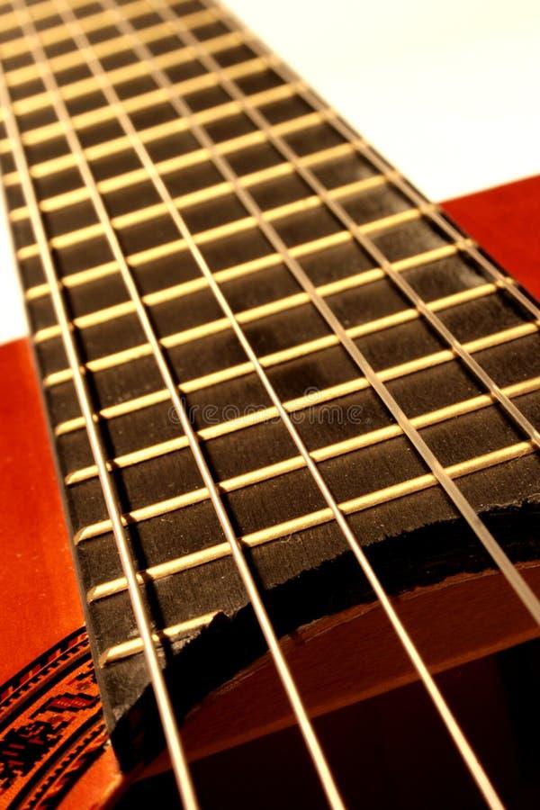 De koorden van de gitaar