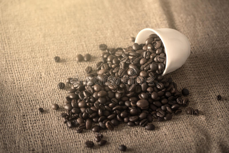 De kop giet koffiebonen op jute stock foto