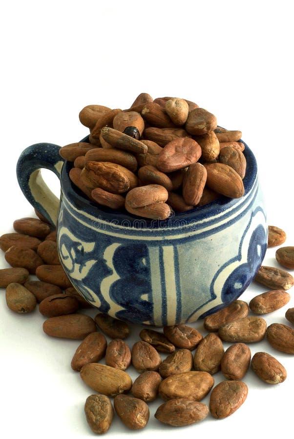 De Kop van de cacao royalty-vrije stock foto