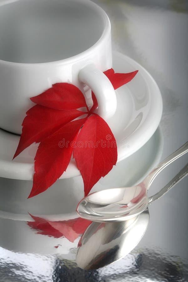 De kop van de koffie en esdoornblad royalty-vrije stock foto