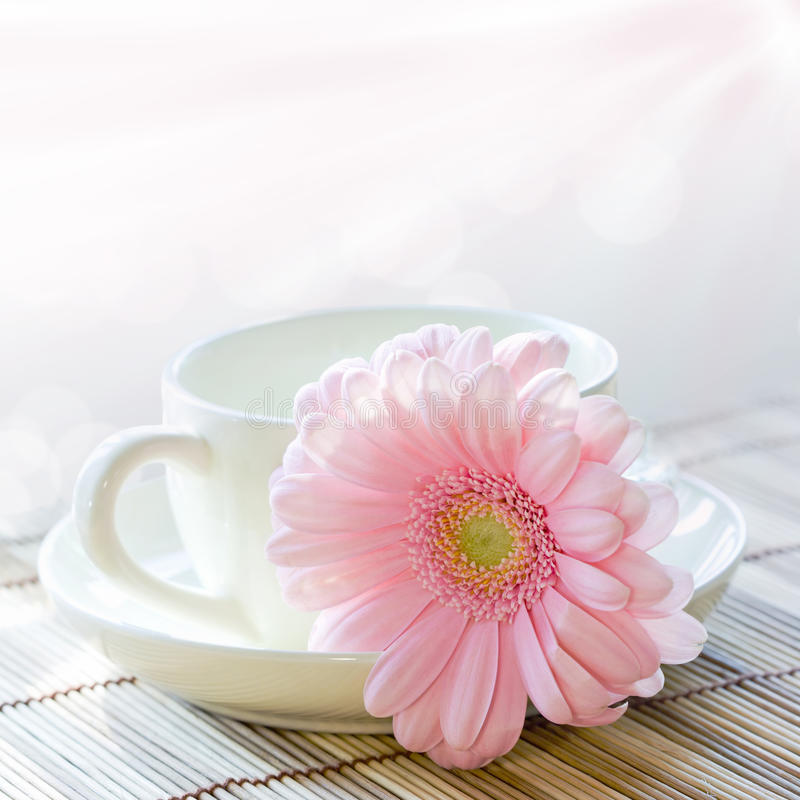 De kop van de koffie en roze chrysant stock afbeeldingen
