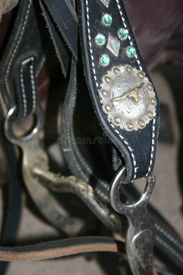 De Kopspijker van het paard stock foto