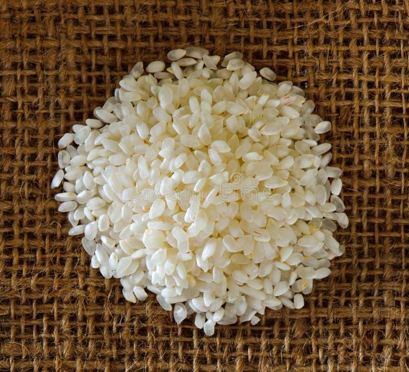 De korrel van de rijst Zie mijn andere werken in portefeuille royalty-vrije stock afbeelding