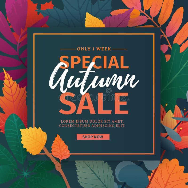 De kortingsbanner van het malplaatjeontwerp voor de herfstseizoen Affiche voor speciale dalingsverkoop met bloem en kruid, herfst stock illustratie