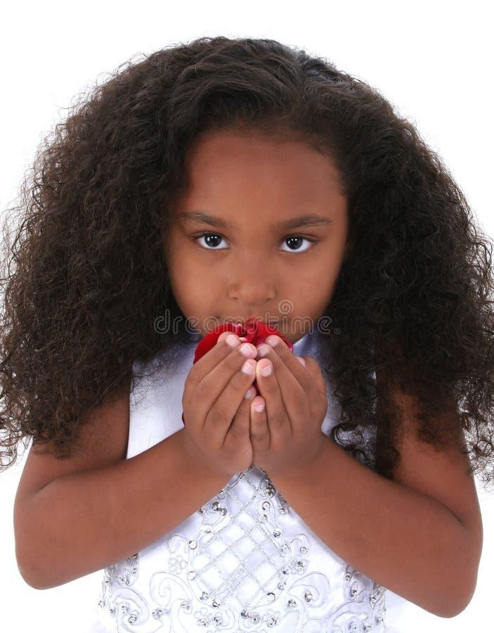 De kostbare Zes Éénjarigen het Ruiken namen Bloemblaadjes toe stock afbeeldingen