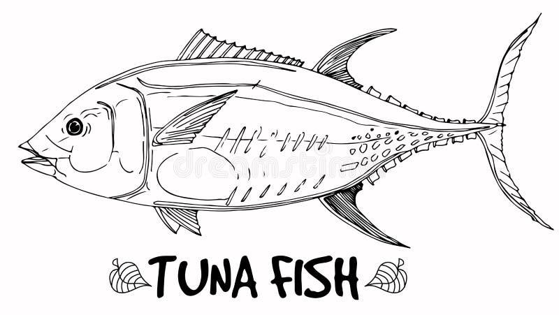 De krabbel van tonijnvissen in lijnen op witte achtergrond royalty-vrije illustratie