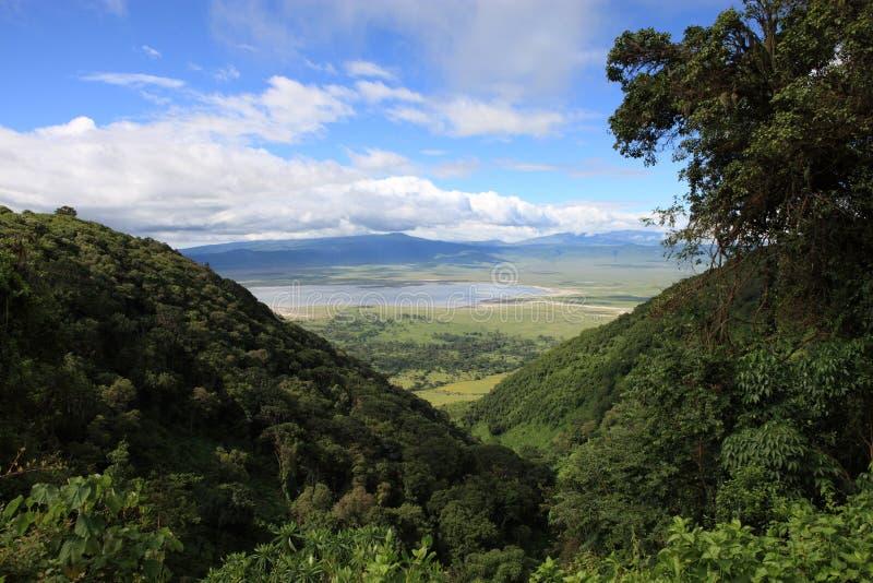 De krater Tanzania van Ngorongoro stock afbeelding