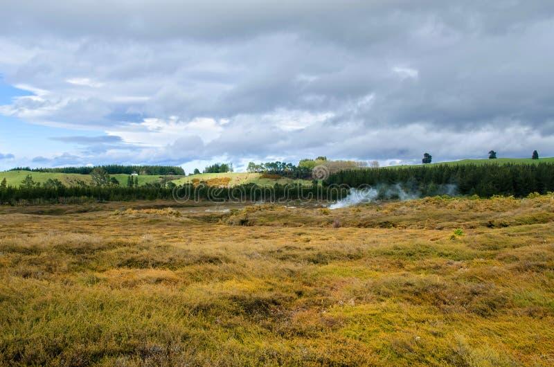 De Kraters van de Maan is het geothermisch gang gevestigd enkel noorden van Taupo stock afbeelding