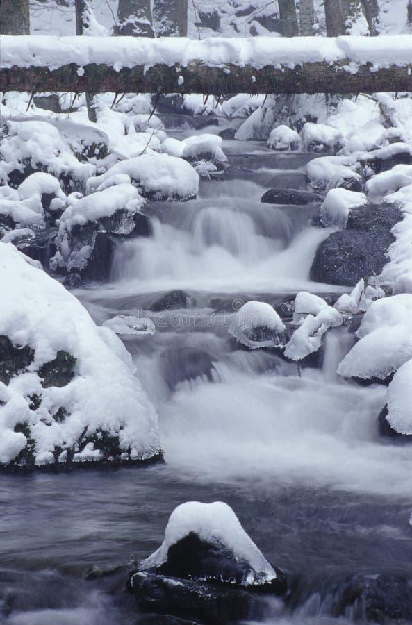 De kreek van de berg in de winter royalty-vrije stock foto