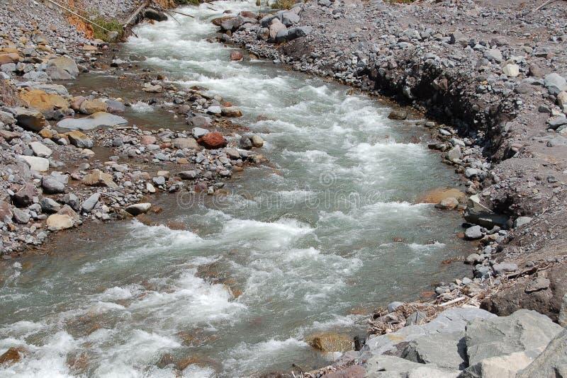 De kreek van Kautz in MT. regenachtiger nationaal park stock foto