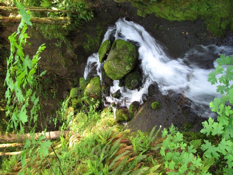 Download De Kreek Van Ruckel In Oregon Stock Afbeelding - Afbeelding bestaande uit oregon, rotsen: 29513431