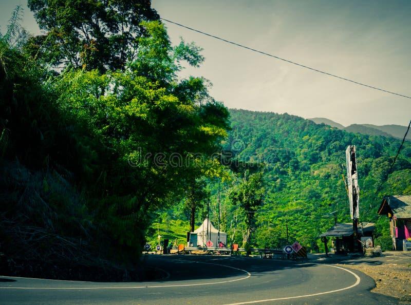 De kromme van het wegasfalt met groen bos op de zijberg in puncakbogor royalty-vrije stock fotografie